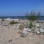 ostsee10