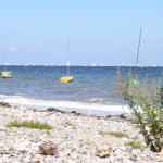 ostsee6