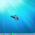 Der Windows 7-Desktop